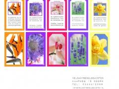 Label Bloemenbetekenis 2