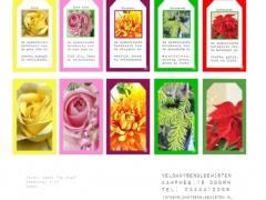Label Bloemenbetekenis 4